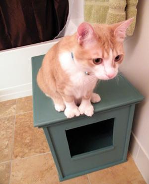 diy litter box cabinet cat