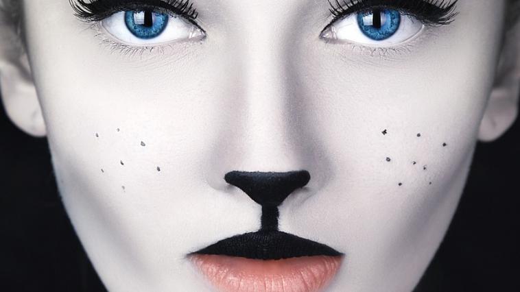 cat makeup video tutorials feature