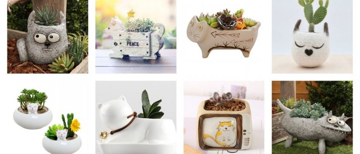 cat planters plant pots feature