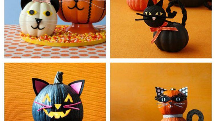 halloween cat pumpkins jack-o-lanterns feature
