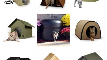 heated cat houses outdoor feral community feature