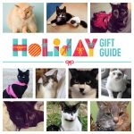 2018 holiday gift guide feature