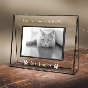Cat Picture Frames Youll Love Meow As Fluff