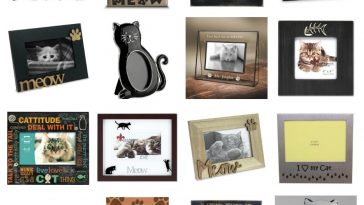 cat picture frames feature