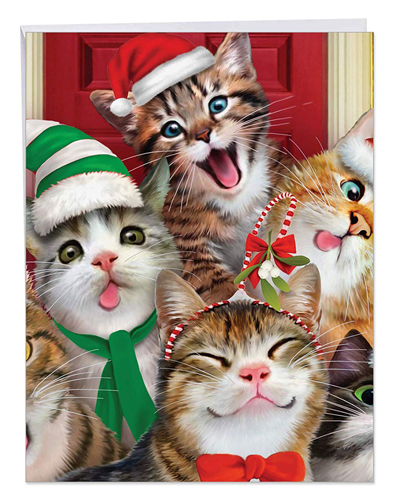 Cute And Quirky Christmas Cards For Cat Lovers Meow As Fluff