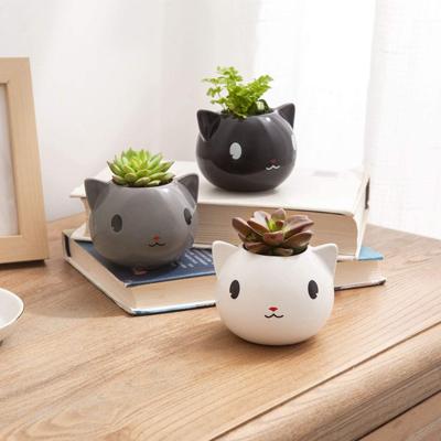 Accent Piece 3D Print Kitty Cat Planter Succulent Planter