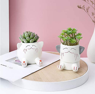 Fun And Functional Cat Planters And Plant Pots For People Who Love Kitties Meow As Fluff